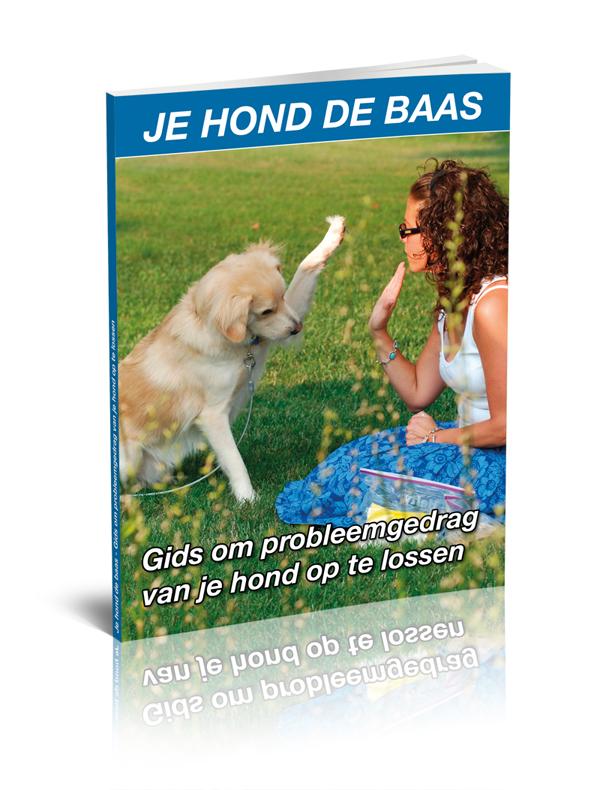E-book; Je hond de baas
